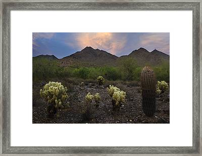 Sunset At Mcdowell Mountains In Scottsdale Az Usa Framed Print by Dave Dilli