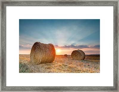 Sunset Bales Framed Print by Evgeni Dinev