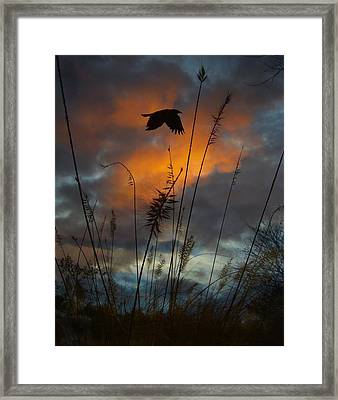 Sunset Clouds Framed Print by Gothicolors Donna