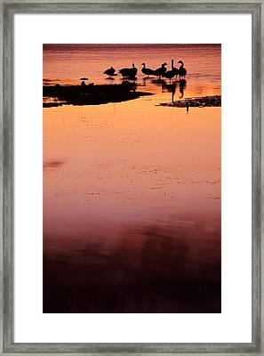 Sunset Discourse- Gorton Pond Warwick Rhode Island Framed Print by Lourry Legarde