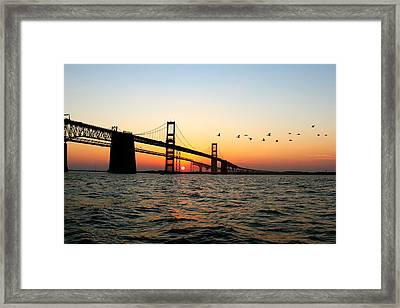Sunset Flight Framed Print by Jennifer Casey