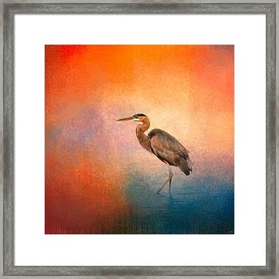 Sunset Heron Framed Print by Jai Johnson