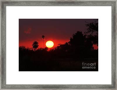 Sunset Off 11 Mile Framed Print by Lynda Dawson-Youngclaus