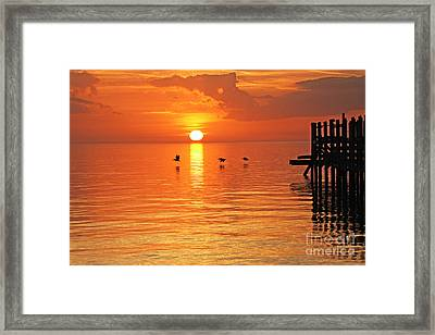 Sunset On Lake Ponchartrain Framed Print by Luana K Perez