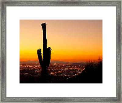 Sunset On Phoenix With Saguaro Cactus Framed Print by Susan  Schmitz