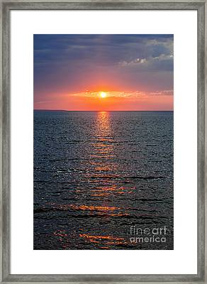 The Eye Framed Print by Elena Elisseeva