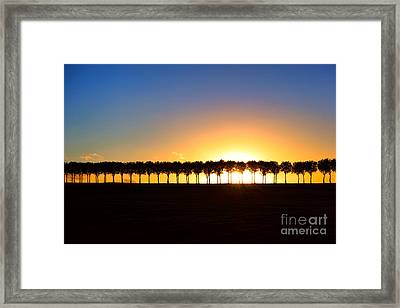 Sunset Over Tree Lined Road Framed Print by Olivier Le Queinec