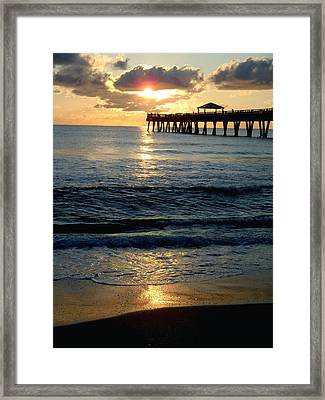 Sunset Pier Framed Print by Carey Chen
