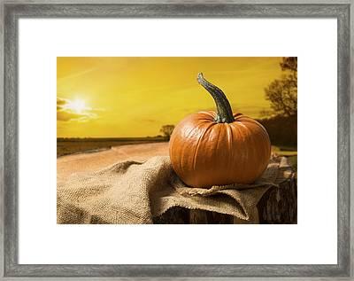 Sunset Pumpkin Framed Print by Amanda And Christopher Elwell