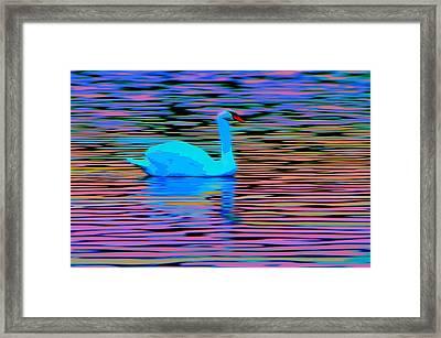 Sunset Shimmer Framed Print by Brian Stevens