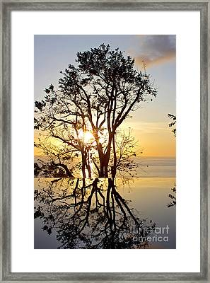 Sunset Silhouette And Reflections Framed Print by Kaye Menner