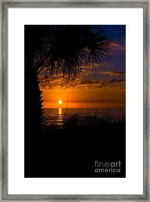 Sunset Silhouette Framed Print by Anne Kitzman