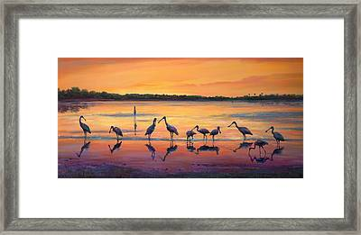 Sunset Spoonbills Framed Print by Laurie Hein