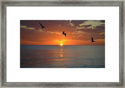Sunset Trio Framed Print by Elbe Photography