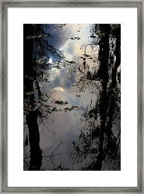 Sunshadow Framed Print by Rdr Creative
