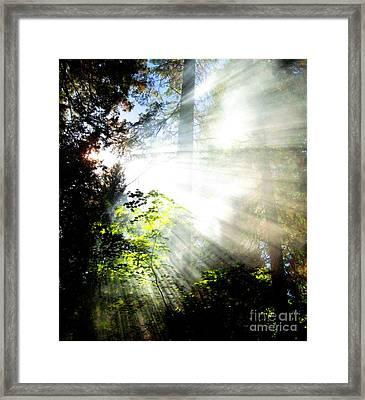 Sunstream Framed Print by Shasta Eone