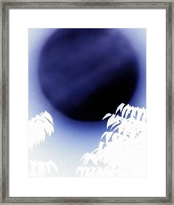 Super Blue Moon Framed Print by Kimberly-Ann Talbert