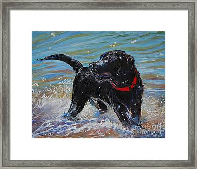Surf Pup Framed Print by Molly Poole