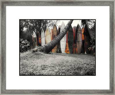 Surfs Up Framed Print by Linda Dunn