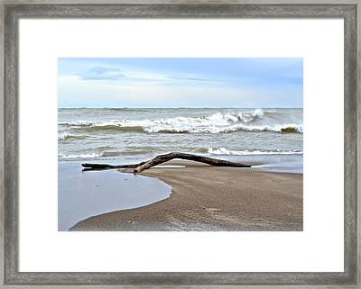 Surfs Up Framed Print by Frozen in Time Fine Art Photography