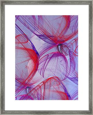 Surprise Framed Print by Jeff Iverson