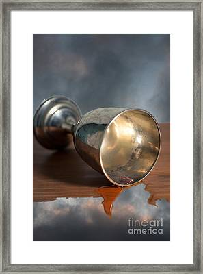 Surreal Chalice Framed Print by Wolf Kettler