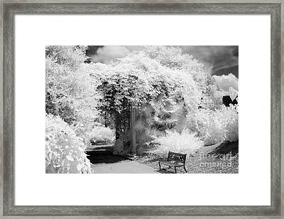 Surreal Dreamy Ethereal Black And White Infrared Garden Landscape Framed Print by Kathy Fornal