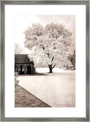 Surreal Dreamy Ethereal Winter White Sepia Infrared Nature Tree Landscape Framed Print by Kathy Fornal