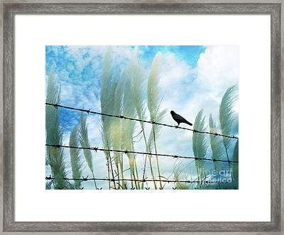 Surreal Dreamy Raven Sitting On Fence Blue Sky Framed Print by Kathy Fornal