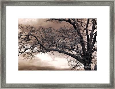 Surreal Fantasy Gothic South Carolina Oak Trees Framed Print by Kathy Fornal
