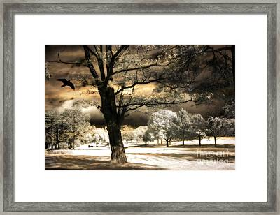 Surreal Fantasy Infrared Trees Raven Landscape  Framed Print by Kathy Fornal