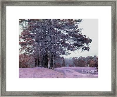 Surreal Fantasy Nature South Carolina Tree Landscape Framed Print by Kathy Fornal