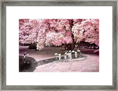 Surreal Fantasy Pink Flamingo Pond Infrared Nature Framed Print by Kathy Fornal