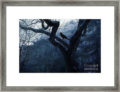 Surreal Gothic Crow Haunting Tree Limbs - Haunting Sapphire Blue Trees  Framed Print by Kathy Fornal