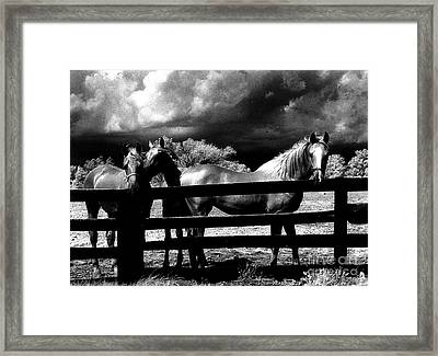 Surreal Horses Stormy Black And White Infrared Horse Landscape Framed Print by Kathy Fornal