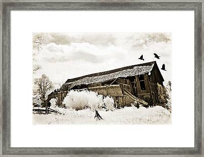 Surreal Infrared Sepia Vintage Crumbling Barn With Flying Ravens - The Passage Of Time Framed Print by Kathy Fornal