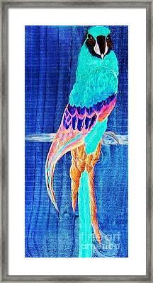 Surreal Parrot Framed Print by Eloise Schneider
