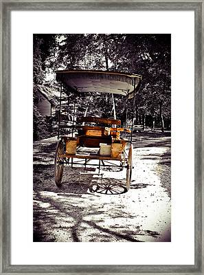 Surrey With The Fringe On Top Framed Print by Colleen Kammerer