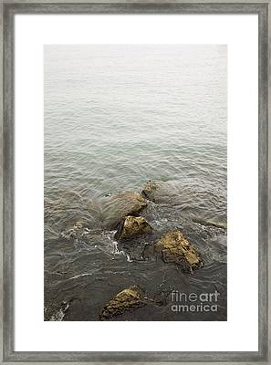 Surrounded Framed Print by Margie Hurwich