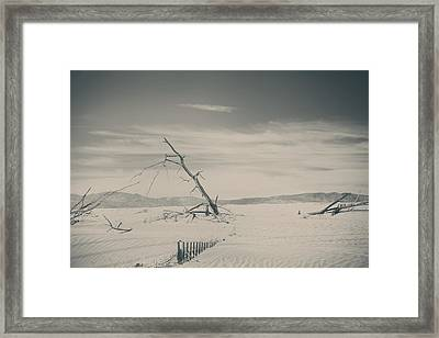 Swallowed Up Framed Print by Laurie Search