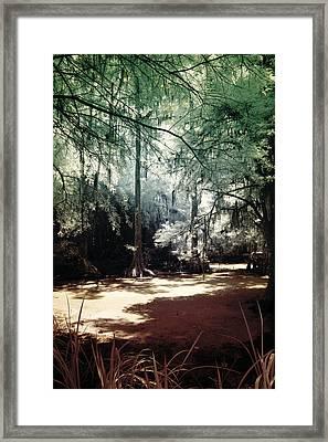 Swamped Framed Print by John Cardamone