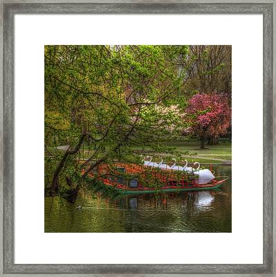 Swan Boats In Boston Public Garden Framed Print by Joann Vitali