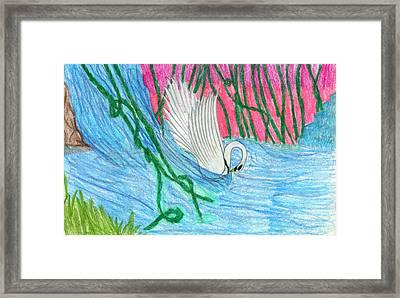 Super Swan Framed Print by Kd Neeley