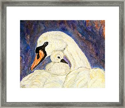 Mother's Love Swan And Baby Painting Framed Print by Ella Kaye Dickey