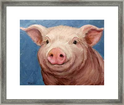 Sweet Baby Pig Portrait Framed Print by Dottie Dracos