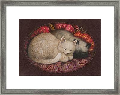 Sweet Dreams Framed Print by Lynn Bywaters