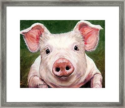 Sweet Little Piglet On Green Framed Print by Dottie Dracos
