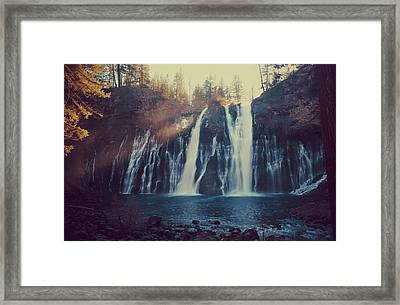 Sweet Memories Framed Print by Laurie Search