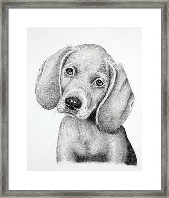 Sweet Puppy Love Framed Print by Lorraine Foster