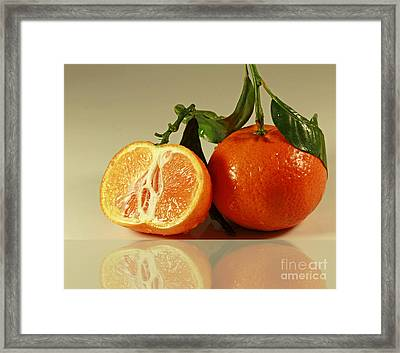Sweet Reflection Of Nature Framed Print by Inspired Nature Photography Fine Art Photography